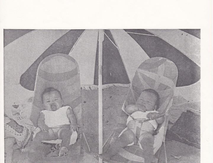 Adoption og Samfund, årgang 4, nr. 4 (1980)
