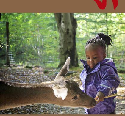 Adoption og Samfund, årgang 38, nr. 1 (2014)